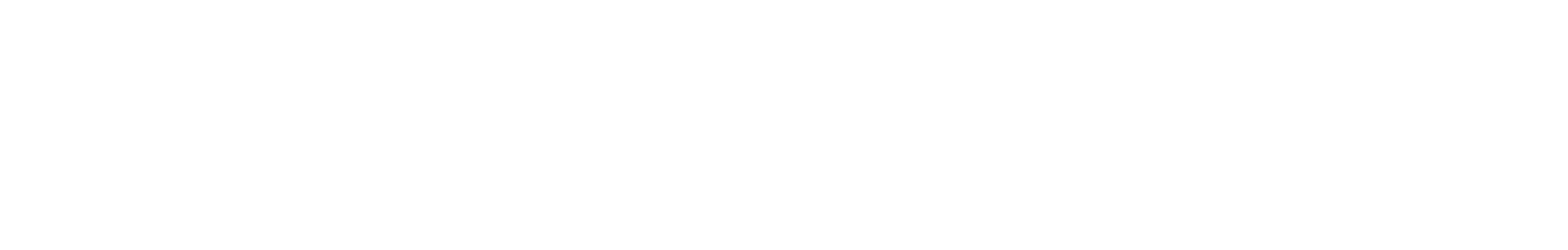 VT-Logo-Bianco-02
